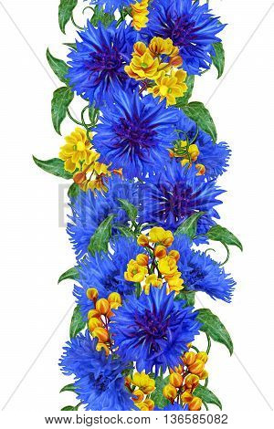 Bouquet of blue cornflowers and yellow barberry. Isolated white background. Pattern seamless. Vertical floral border.