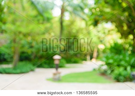 Blurred park with bokeh light. nature blur background. Spring meadow with big tree with fresh green leaves. Vintage effect style pictures.