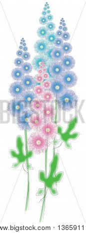 Flowers, mallow, painted, delicate, blue, pink, garden, flower bed.