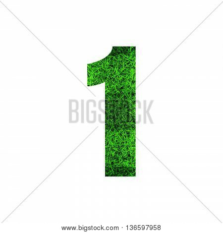 Number 1 (one) with green grass texture background.
