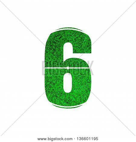 Number 6 (six) with green grass texture background.