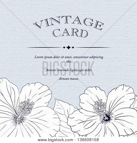 illustration with hibiscus flowers. Vector congratulation or invitation card. old sharpen blue background