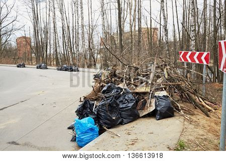Piles of garbage bags and dead trees along edge of the road.