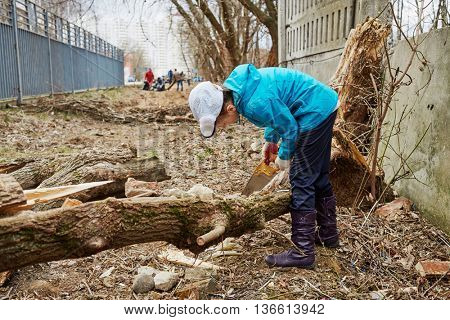 Girl saws old fallen tree outdoor at spring day.