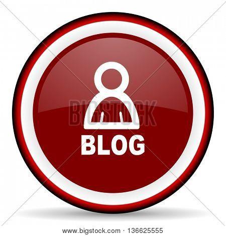 blog round glossy icon, modern design web element