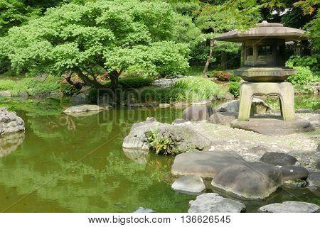 Japanese Outdoor Stone Lantern, Green Plants In Zen Garden