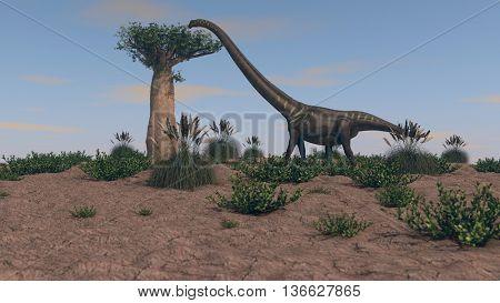 3d illustration of mamenchisaurus walking on grassy terrain