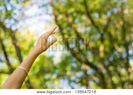 Woman Hand Reaching Towards Nature And Sky