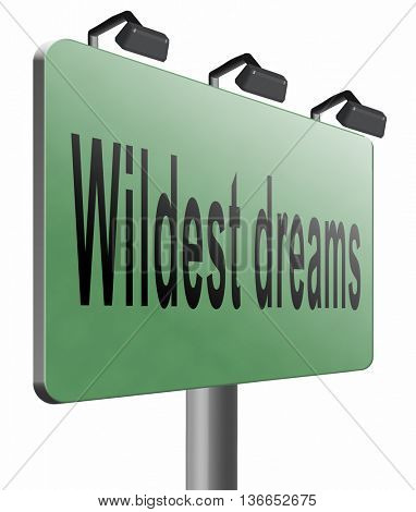 make wildest dreams come true, live and realize your dream, 3D illustration, isolated on white