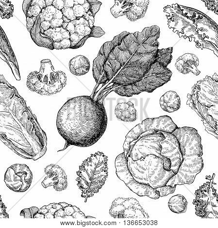 Vegetable drawing seamless vector pattern. Farm market products. Beetroot cabbage broccoli cauliflower lettuce chinese cabbage. Detailed vegetarian food drawing.