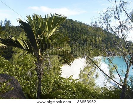 Tropical Landscape Of Coast Of Anse Georgette, Seychelles