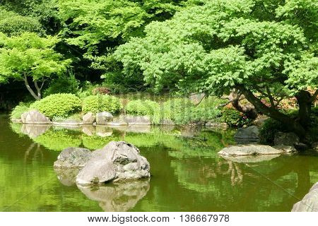 Trees, Lake With Reflection In The Japanese Zen Garden