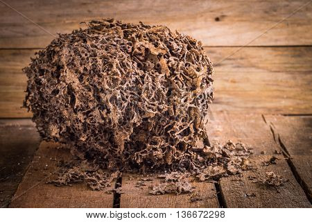 Decay brown log destruction by termite on wooden board