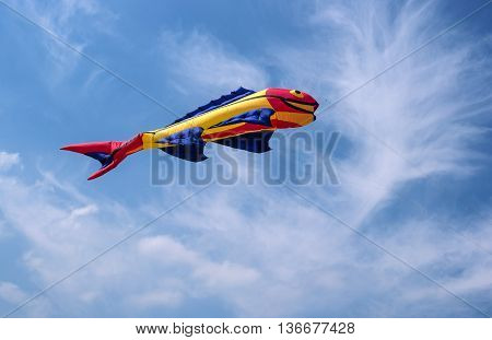 Saint-Petersburg, Russia - June 26, 2016: Kite in the form of a fish against a blue sky.