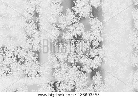 Closeup of large snow or ice crystals on a window glass