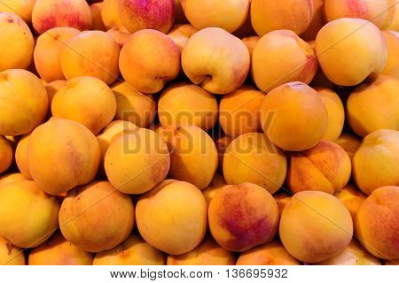 Apricots for sale at market. Close up