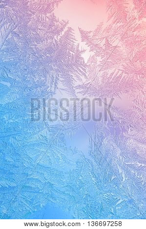 Beautiful Closeup Winter Window Pane Coated Shiny Icy Frost Patterns