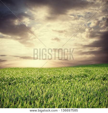 image of beatiful summer or spring landscape and sky with clouds toned in vintage style