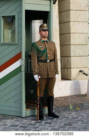 Guard At The Presidential Palac In  Budapest