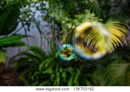 Soap Bubbles Fly In The Garden