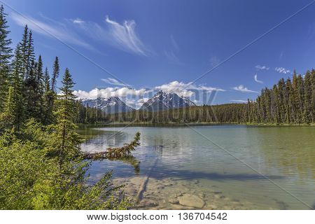 Small Lake In Jasper National Park - Alberta, Canada
