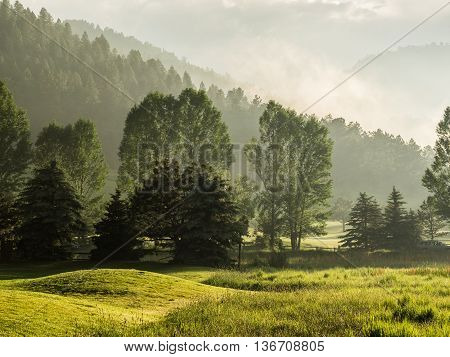 Late afternoon hills and trees in sunlight and light fog