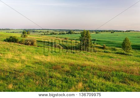 Summer rural landscape with green fields and meadows at sunset