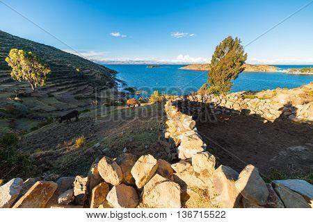 Inca Trail On Island Of The Sun, Titicaca Lake, Bolivia