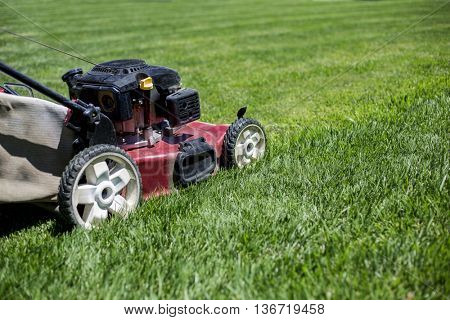 Mowing the lawn outdoors with perfectly healthy grass