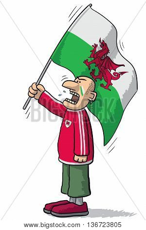 Wales Soccer Supporter