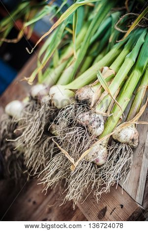 Provence wight garlic drying on a shed door