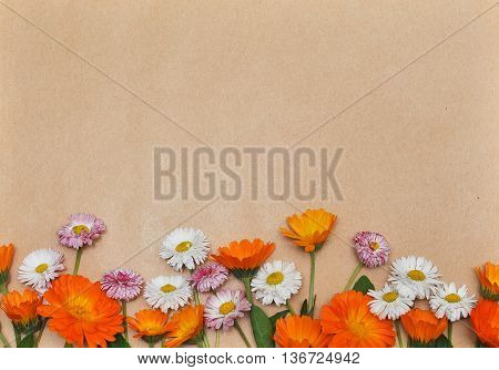 Frame of chamomile and calendula flowers on a beige background