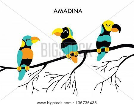 Cartoon african Amadina birds. Vector cartoon african birds made in flat style. Isolated wild african birds. Cartoon african birds background. Amadina african bird.