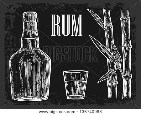Glass and bottle of rum with sugar cane. Vintage vector engraving illustration for label poster web invitation to party. Isolated on white background