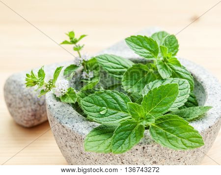 Closeup Fresh Peppermint Leaves In The White Mortar With Pestle On Bamboo Cutting Board . Shallow De