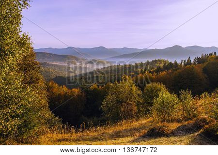 beautiful summer landscape in Europe, Carpathian mountains