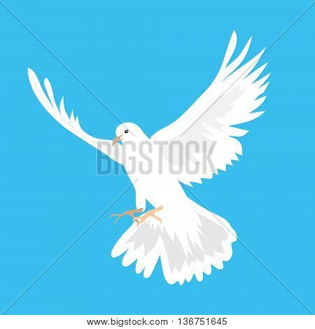 Vector illustration of beautiful white dove flying way up in a blue sky