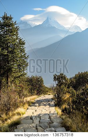 The way to Poon Hill stone stair in the forest and beautiful mountain view of Annapurna Range (part of Himalaya), Nepal