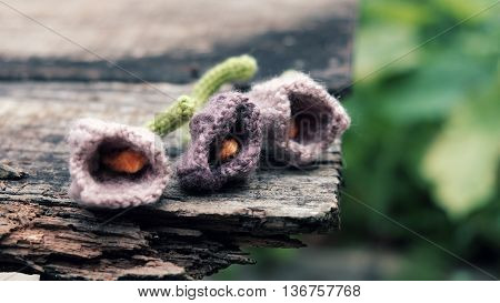 Knitted Tulip Flower