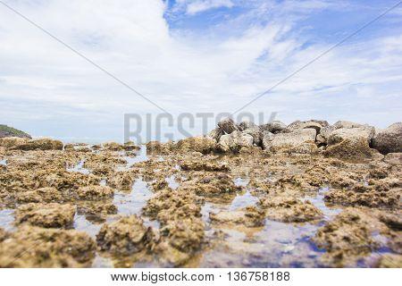 The rocks on the beach, nature seascape