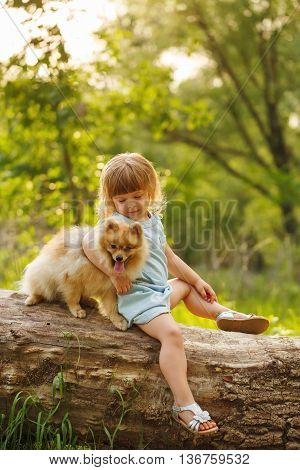 Little girl and pets. The girl and a dog sitting on a fallen tree. Pedigree dogs Spitz. Funny animals.