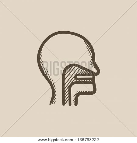 Head with ear, nose, throat system vector sketch icon isolated on background. Hand drawn head with ear, nose, throat system icon. Head with ear, nose, throat icon for infographic, website or app.