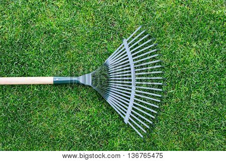 rake on a wooden stick, collecting grass clippings, garden tools