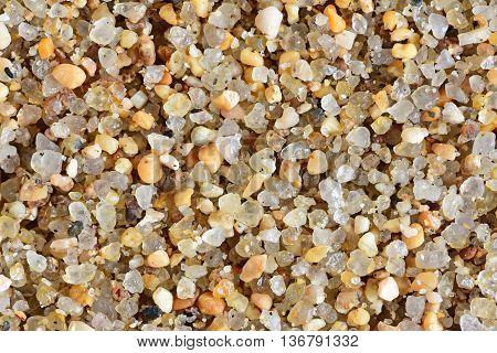 Sea Beach. Ocean. sea sand close up