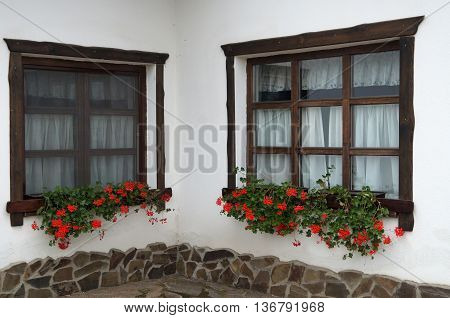 Wooden windows are made in the old style with red flowers on a white background
