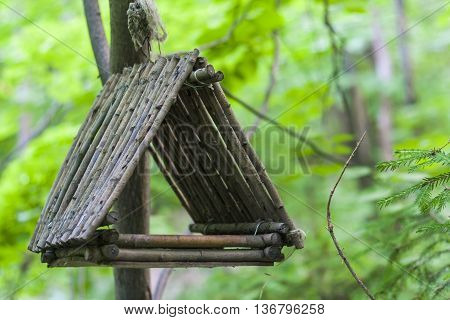 Feeder, Birdhouse In A Tree In The Woods Or Park. For Feeding Of Squirrels And Birds.