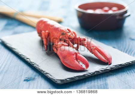 fantastic and fresh lobster ready to be cooked