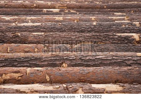 Wood timber pile, wooden lumber as background