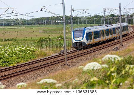 Flevoland the Netherlands - June 19 2016: Dutch NS snel train riding through the Oostvaardersplassen