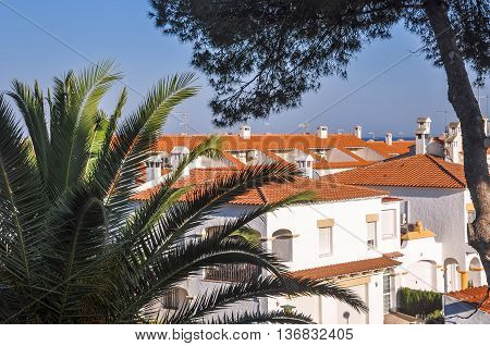 View on chalets with housetops from terracotta tiles with palm and pine trees. Travel destination. Costa Dorada Spain. Horizontal.